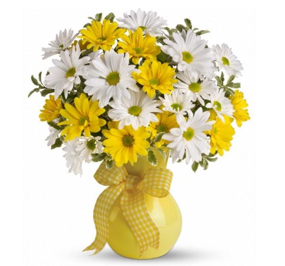 Yellow & White Daisies Bouquet